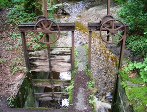 Old-fashioned dam on in the forest